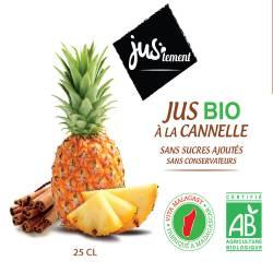 Pur jus de fruit ananas BIO à la cannelle 100 cl carton de 6