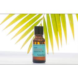 ESSENTIAL OIL GINGER 20ML