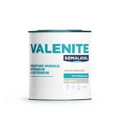 VALENITE BRILLANT 1KG BLANC