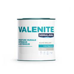 VALENITE BRILLANT_TEINTÉS 3KG